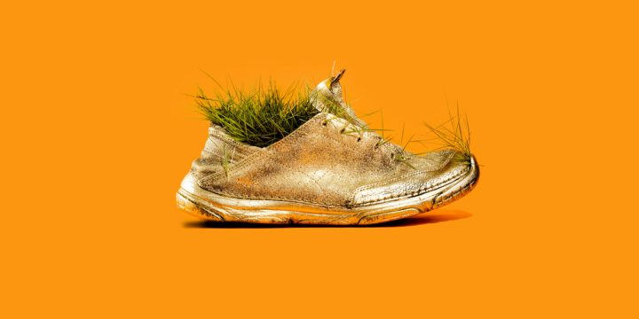 gold running shoe sprouting plants