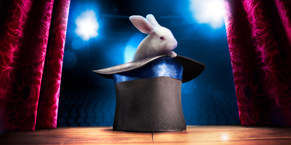 Rabbit out of a hat